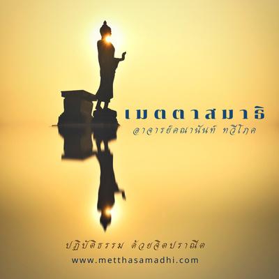 วิปัสสนาญาณ - เมตตาสมาธิ (Metthasamadhi)
