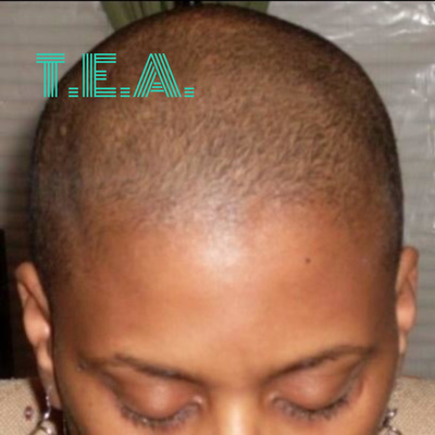 T.E.A. - The Educational Architect