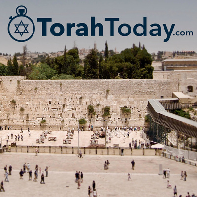 TorahToday