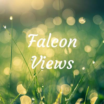 Falcon Views