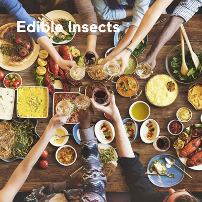 Edible Insects - An Ancient Food Trending Today with Bill Broadbent. Interviewed by Adam Met