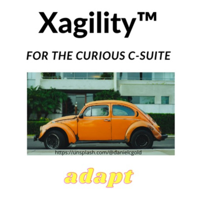Sustainable Xagility™ - board & executive c-suite agility for the organization's direction of travel