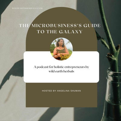 The Microbusiness's Guide to the Galaxy