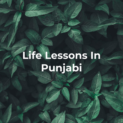 Life Lessons In Punjabi - From Great Books, Movies & History.