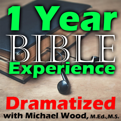 1 Year Audio Bible Experience