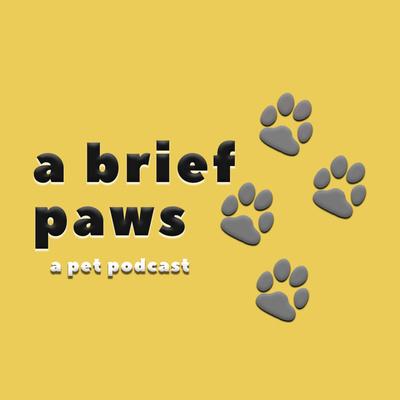 A Brief Paws: a pet podcast