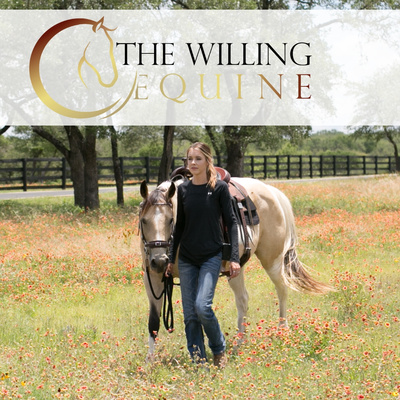 The Willing Equine