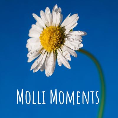 Molli Moments