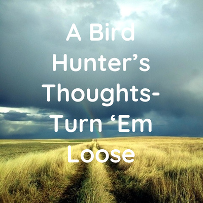 A Bird Hunter's Thoughts- Turn 'Em Loose