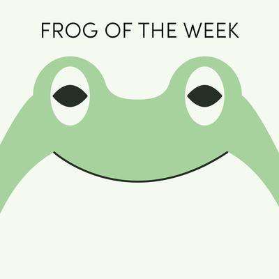 Frog of the Week