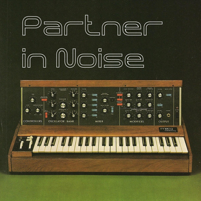 Partner in Noise