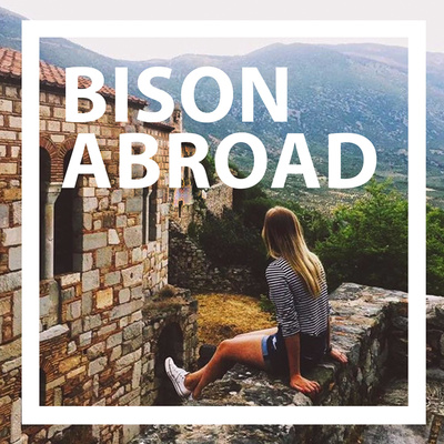 Bison Abroad
