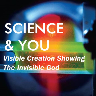 Science & You