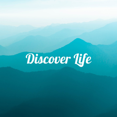 Discover Life - Experiencing God with Brock @ RWC