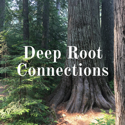 Deep Root Connections