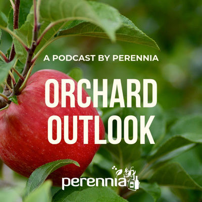 Orchard Outlook