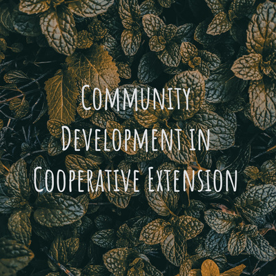 Community Development in Cooperative Extension