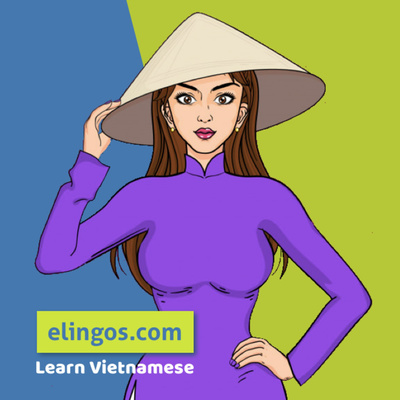 Speak Vietnamese with Elingos | Conversational Southern Vietnamese