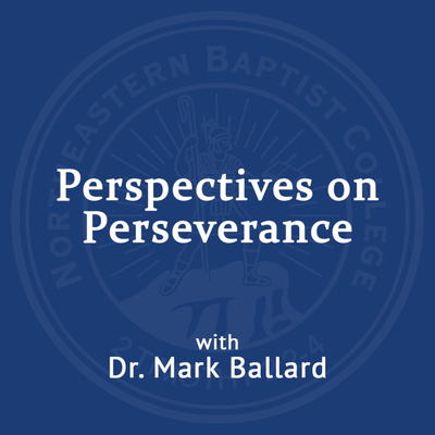Perspectives on Perseverance