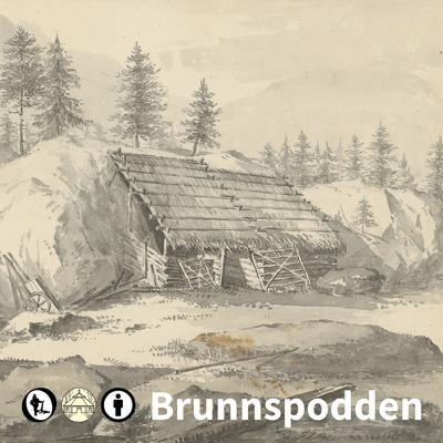 Brunnspodden: Museer och kulturarv