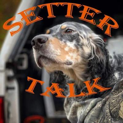 Setter Talk