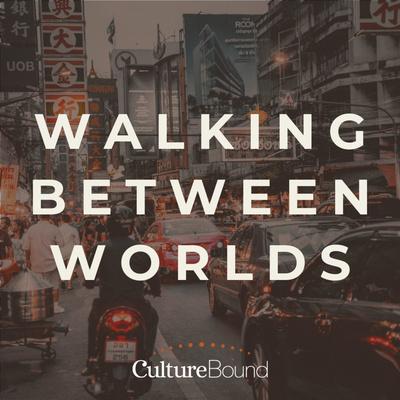 Walking Between Worlds