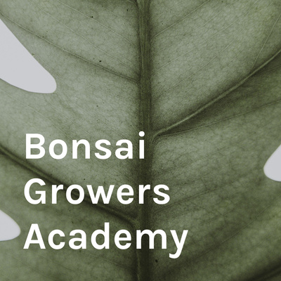 Bonsai Growers Academy