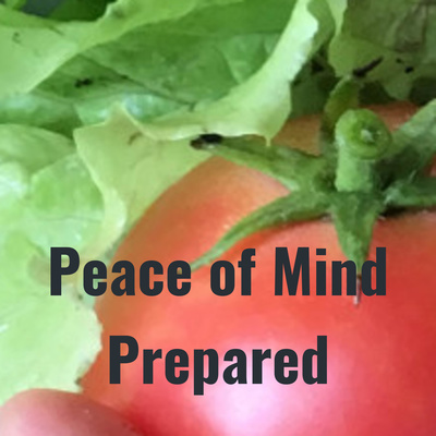 Peace of Mind Prepared