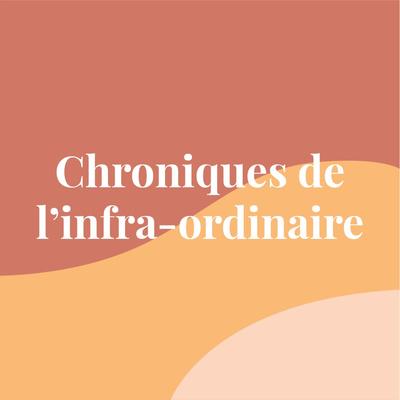 Chroniques de l'infra-ordinaire