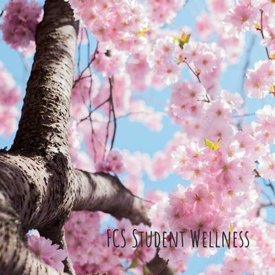 FCS Student Wellness: Strategies, Techniques & Tips
