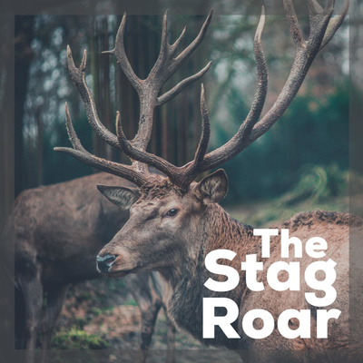 The Stag Roar