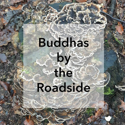 Buddhas by the Roadside