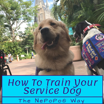 How To Train Your Service Dog - The NePoPo® Way