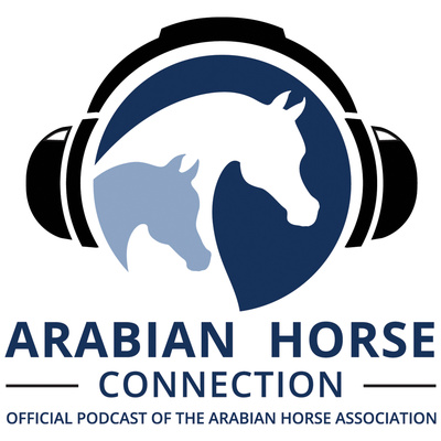 The Arabian Horse Connection
