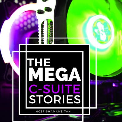 The Mega C-Suite Stories