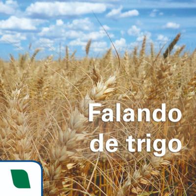 Falando de trigo
