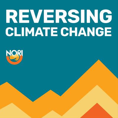 Reversing Climate Change
