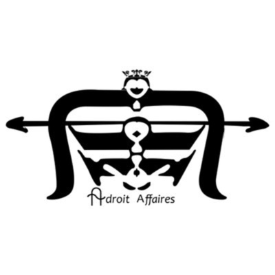 Adroit Affaires: In Your Business™