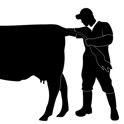 Cody Creelman, Cow Vet