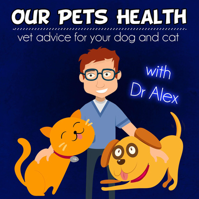 Our Pets Health: vet advice for your dog and cat