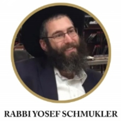 Rabbi Yosef Schmukler  - 1 Chapter a Day -  Rambam