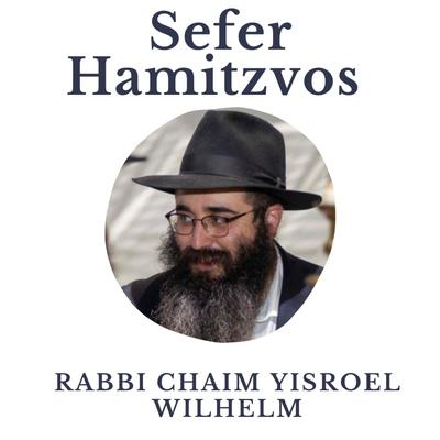Daily Sefer Hamitzvos by Rabbi Chaim Yisroel Wilhelm