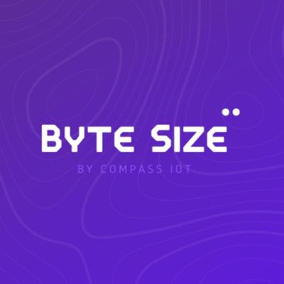 Byte Size