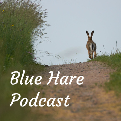 Blue Hare Podcast ~ On Storytelling