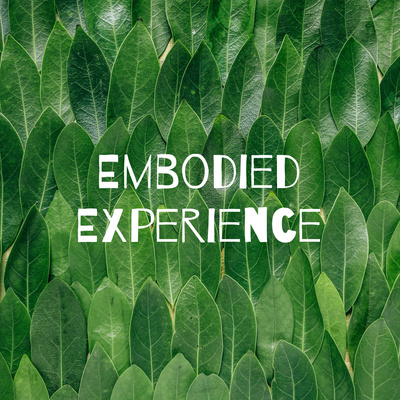 Embodied Experience - The Path of Evolving