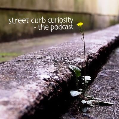 Street Curb Curiosity