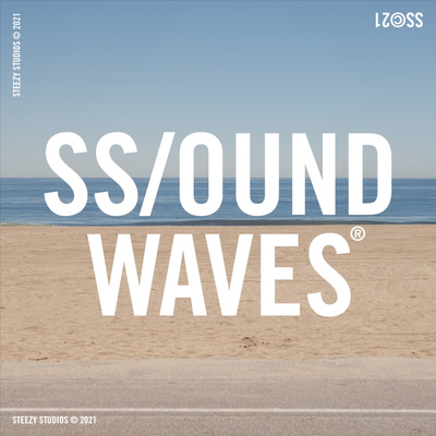 SS/OUND WAVES