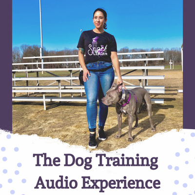 The Dog Training Audio Experience