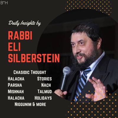 Daily Insights by Rabbi Eli Silberstein