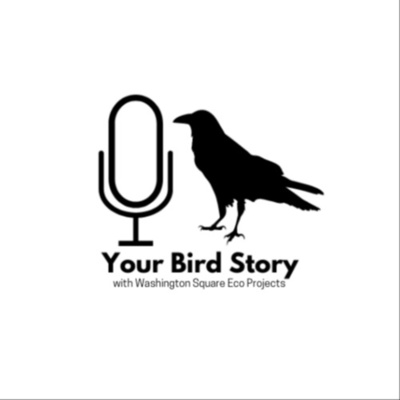Your Bird Story